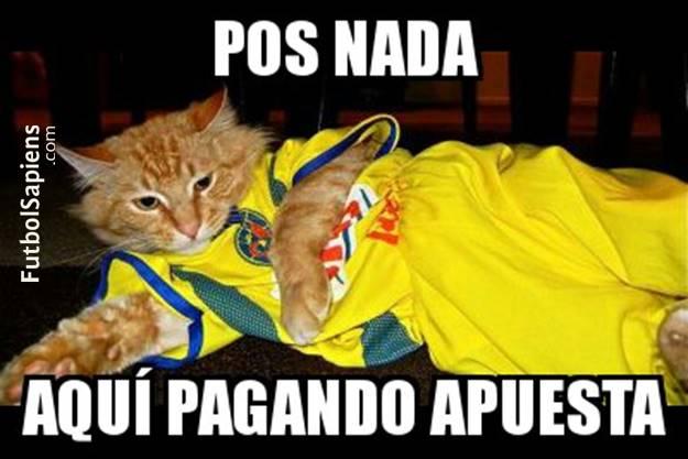 Memes de America vs Pumas gato 2 los memes del américa pumas estadio deportes,Memes America Pumas 2016