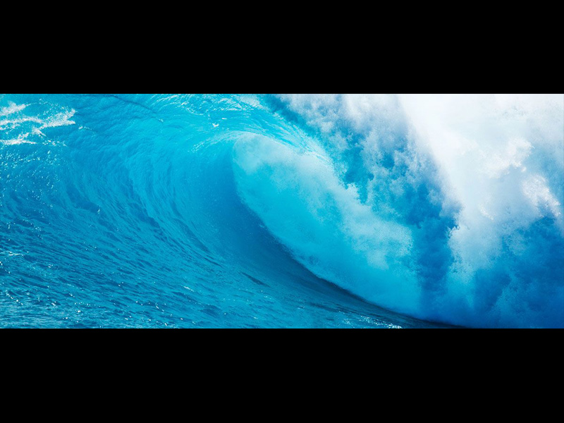 Hagamos conciencia en este Día Mundial de los Océanos
