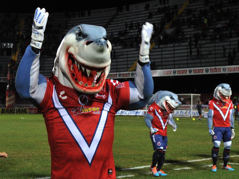 VIDEO: La mascota de Veracruz vuelve a dar de que hablar
