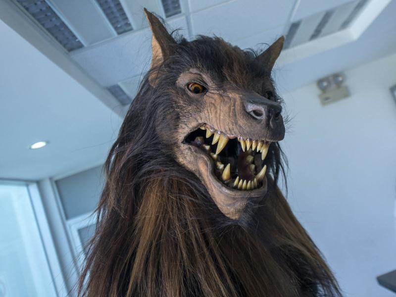¡De miedo! Así es la nueva mascota de Lobos BUAP