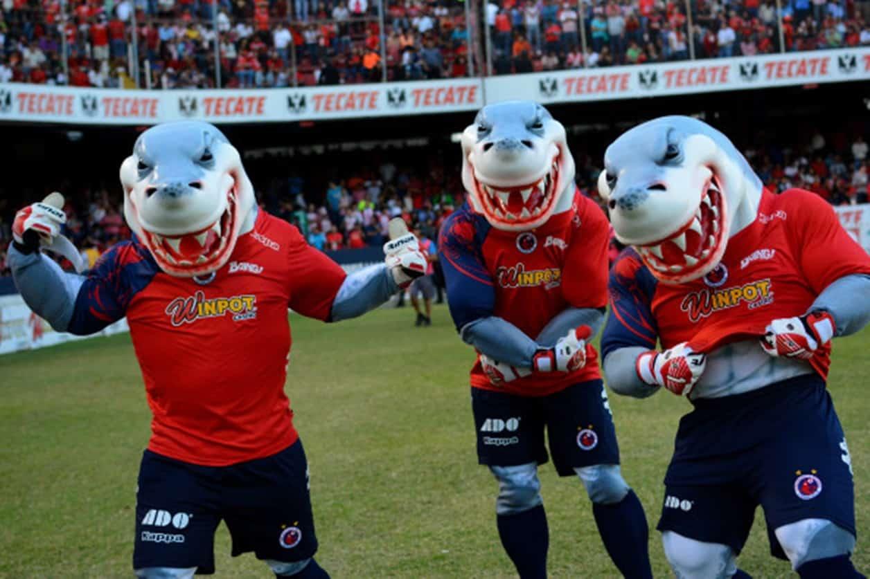 Abraham González recomienda paciencia para que Veracruz evite descenso